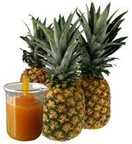Pineapple Pulp - Puree